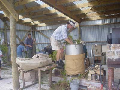 Tea Tree Oil Distillation