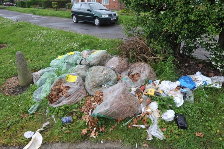 Rivas Rubbish Removal offers affordable rubbish removal service in the Boston area. They are capable to furnish best commercial clearance, residential building clearance and garden clearance services.