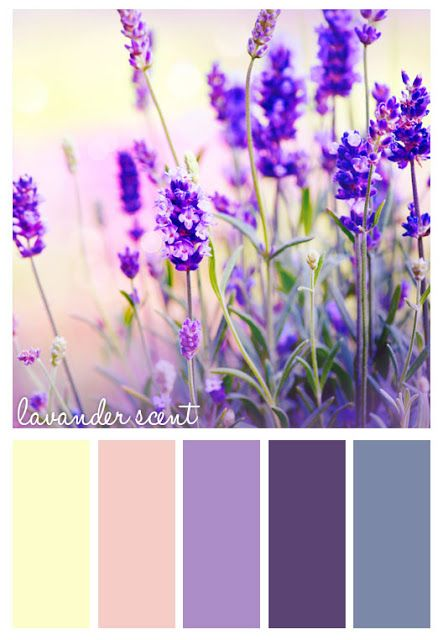 Lavender palettes in your bedroom just seem to encourage sleep so much! How about a beautiful black-out vertical blind in one of these shades?