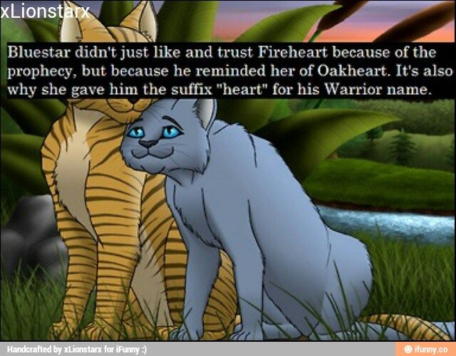 Image result for warrior cats headcanons