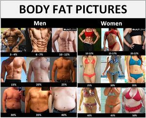 Body Fat Percentage chart for men and women that ranges from ideal to overweight based on age and gender.