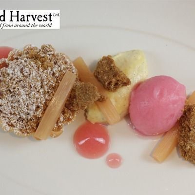 Rhubarb and grasmere gingerbread dessert by Nigel Mendham