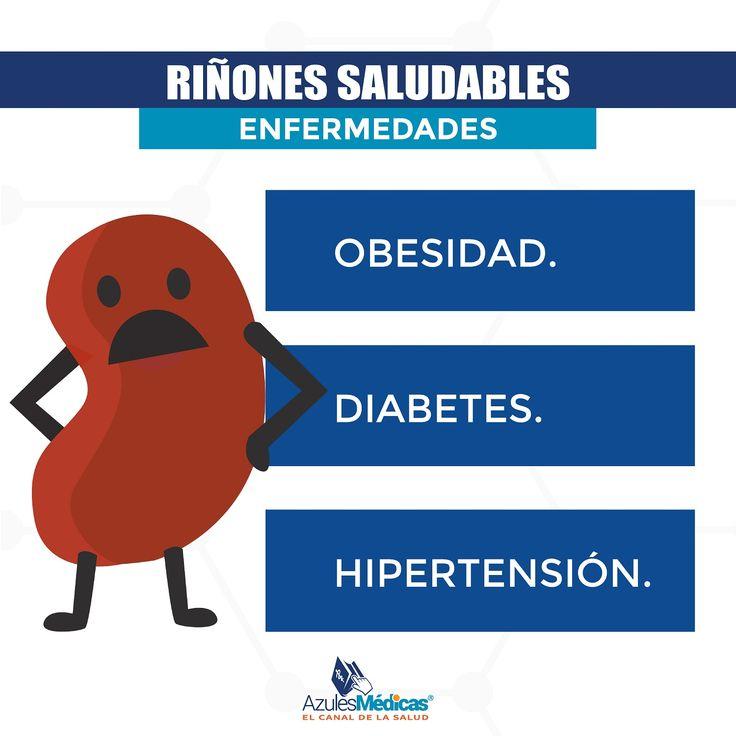 ¿Qué hace el riñón? El riñón es el filtro de la sangre.  La sangre pasa a través del riñón y él se encargar de eliminar las sustancias que son toxicas, que quedan del metabolismo de los alimentos y medicamentos.  Cuando el riñón falla, pueden filtrarse sustancias como proteínas, moléculas, sangre, proteínas o azúcar.  #Rinon #DiaMundialDelRinon #Salud #Prevencion #Medicina #Medicos #Colombia #Obesidad #Hipertension #Diabetes #VidaSana  http://bit.ly/1XfI9B1