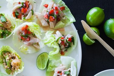 Iceberg cups with Mexican fish ceviche or asian chicken and prawn