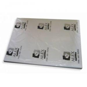 Alex Schoeller Design Teknik Çizim Kağıdı 70x100 cm. 100'lü Paket 200 gr.
