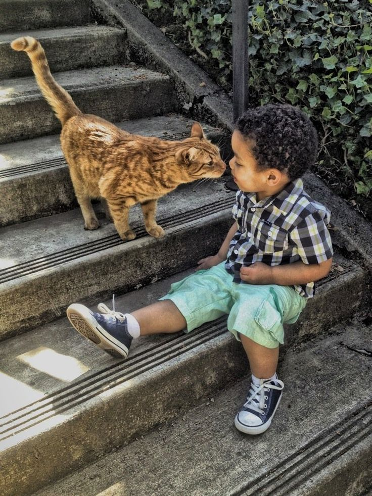 ajaxmonkey:  #ThisIsMyHDR #hdr #cat #cute #love #animal #boy #baby #toddler #shoes (from @Douglas1983 on Streamzoo)