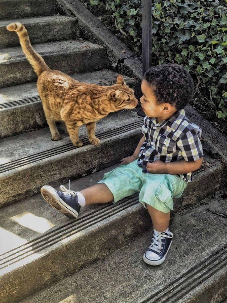 """""""Hello kitty"""""""