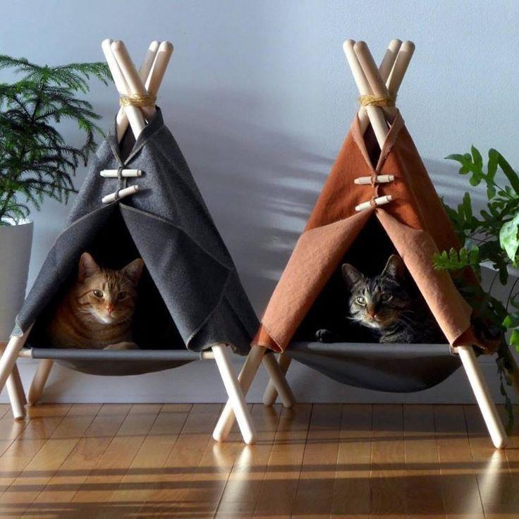 Eine sehr moderne Höhle, in der sich Ihre Katze verstecken und in einer Umgebung bleiben kann