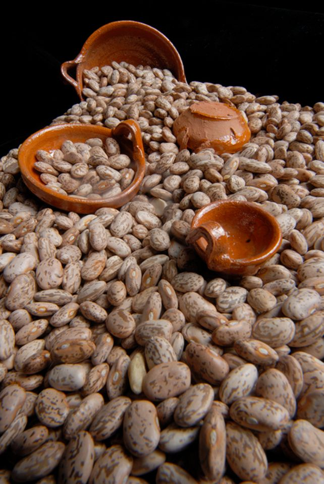 Still-life photography - Frijol pinto/Pinto beans001