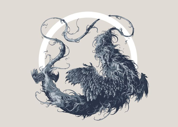 Compilation of recent personal and commissioned illustrations about beasts andfeathers.