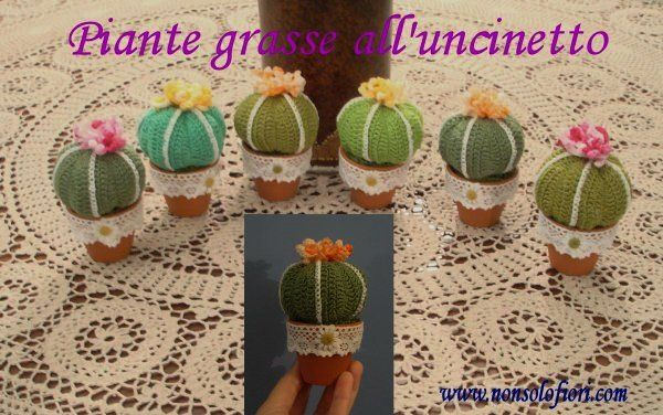 1000+ images about Piante grasse all'uncinetto su Pinterest