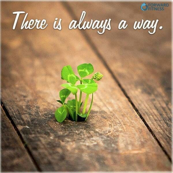 In the act of planting a seed both faith and hope are demonstrated. Things grow in spite of circumstances and against all odds.