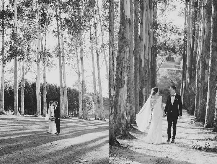 Australian gum trees and one stunning couple! Tweed Hinterland Wedding - Velleron House - Nat McComas. Tweed Wedding Celebrant. Byron Bay Wedding Celebrant