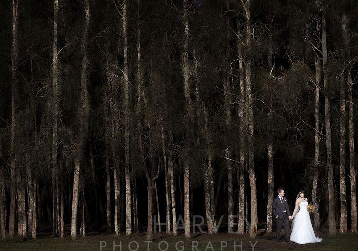 Wedding landscape - The Vintage, Hunter Valley - natharvey@aapt.net.au