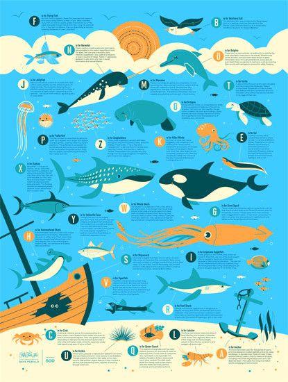 Ocean Alphabet by Fifty Five Hi's