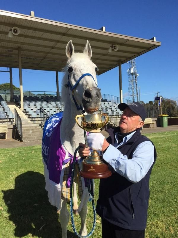 """Here he is 22 years later, Australia's great horse racing ambassador, 1992 Melbourne Cup winner, Subzero -- """"Subbie"""" -- with the #EmiratesMelbourneCup at Werribee this morning"""