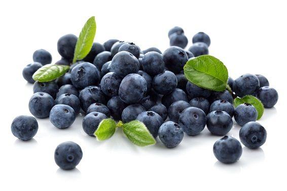 benefícios do mirtilo para a saúde e beleza fruta rica em antioxidantes, vitaminas  minerais