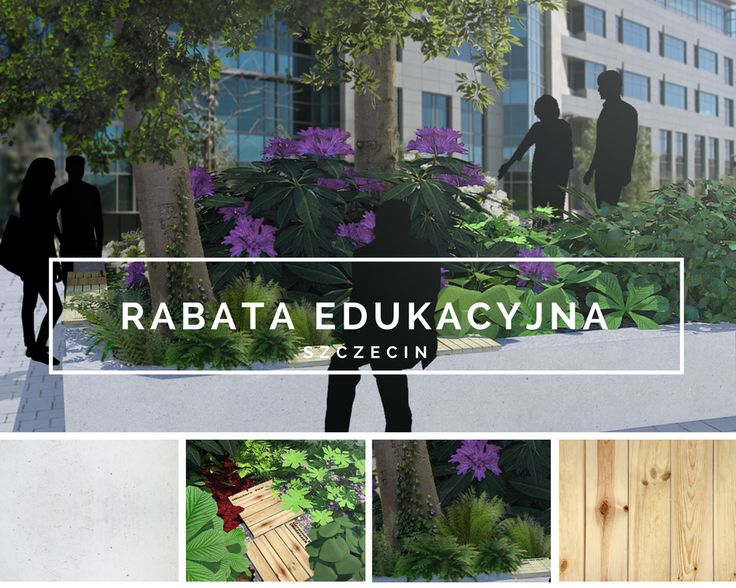 Rabata edukacyjna