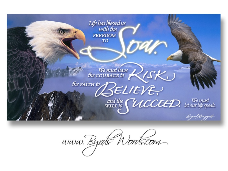 Quotes About Soaring Like Eagles. QuotesGram