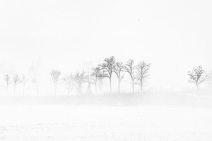 Photograph winter by adelino rossi on 500px