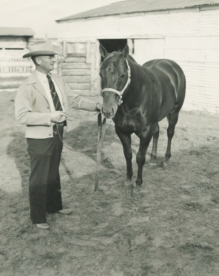 "Loyd Jinkens was known to many as ""Mr. Quarter Horse,"" and rightfully so. He was associated with the breed from its beginning and became a goodwill ambassador for the Quarter Horse. He was inducted into the Hall of Fame in 1999. Learn more about the AQHA Hall of Fame inductees at http://aqha.com/en/Foundation/Museum/Hall-of-Fame/Hall-of-Fame-Inductees.aspx"