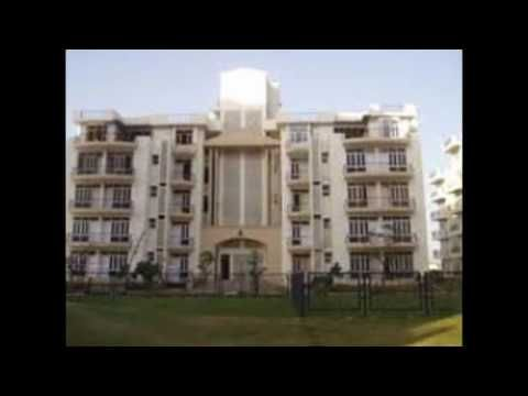 Pemex Energy Gurgaon :Reviews About Ardee City Gurgaon