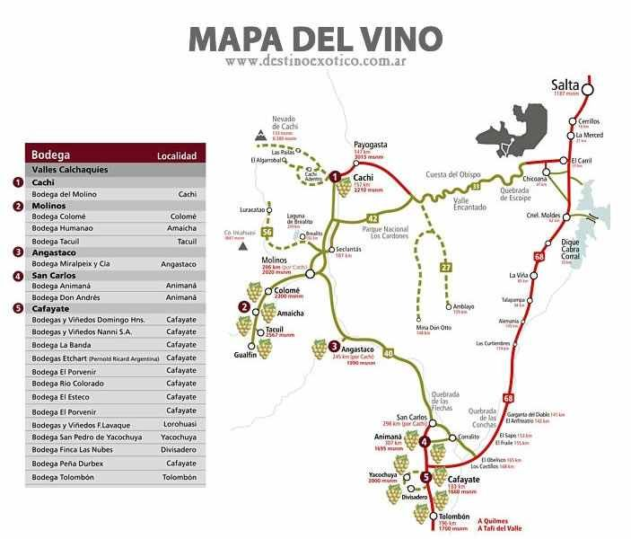 Ruta del Vino en Salta