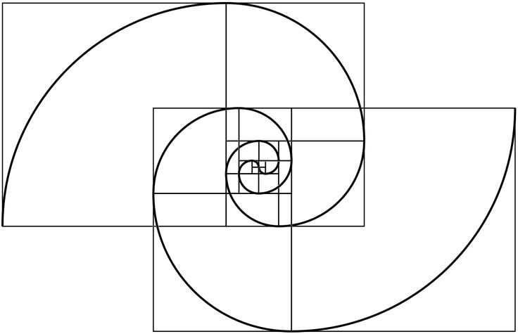 Combined a fibonacci with a fermat spiral - Imgur                                                                                                                                                     More
