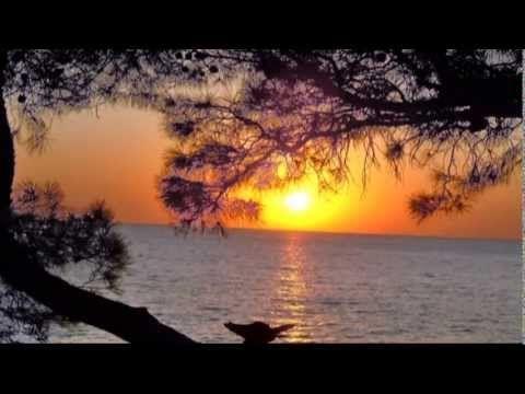 Ф. Шуберт - Вечерняя серенада F. Schubert - Serenade