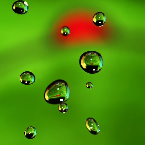 .Design Ideas, Macro Photography, Red Spots, Close Up Photography, Close-Up Photography, Green Glories, Droplets Photography, Red Green, Water Drop