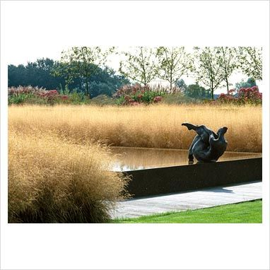 Piet Oudolf design for Piet and Karin Boon outside of Amsterdam.  Planting of Deschampsia caespitosa.