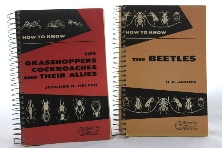How to Know Beetles / Grasshoppers -- Picture Key Nature Series Spiral Bound Softcover -- Jacques Helfer -- Bugs, Gardening -- 1960s  Identifying bugs!  This is a pair of spiral bound softcover books from the Picture Key Nature Series; Wm. C. Brown Company publishers. How To Know The Beetles; H. E. Jaques; 372 pages; 8.5 x 5.5.  How To Know The Grasshoppers, Cockroaches and Their Allies; Jacques R. Helfer; 353 pages; 8.5 x 5.5. Both books are chock-full of diagrams, descriptions, aids in...