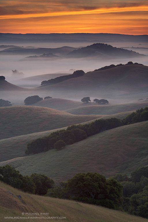 Endless Layers, Petaluma,  California