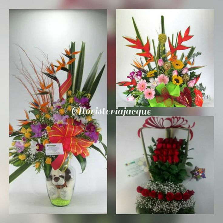 """Floristeria Jacque.. en Twitter: """"#Happy #Love #Flowers #paisas Compre desde #USA online. La entrega en #medellin es gratis. WhatsApp: 3008742358 https://t.co/dmWZ7EOIHr"""""""