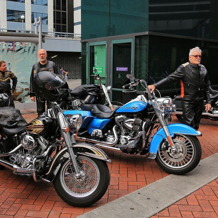 Tim Bulurangi Motorbikes Harley Davidson siap berkeliling Auckland! Anda ingin mencoba petualangan seru dengan mereka? Cek info lebih lanjut disini >> www.bulurangi.com/motorcycle-tours #Aukland #tour #bulurangi #harley #jalanjalan #newzealandtrip #LuxuryNZ #nz #nzmustdo #instalike #instamood #bestoftheday #bestmoment #outdoor #luxurynz #goodmorning #vacation #getaway #ilovetravel #instago #holiday