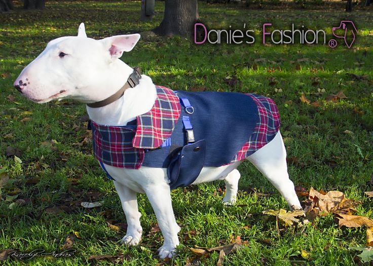 Dog denim vest with shirt http://daniesfashion.com/