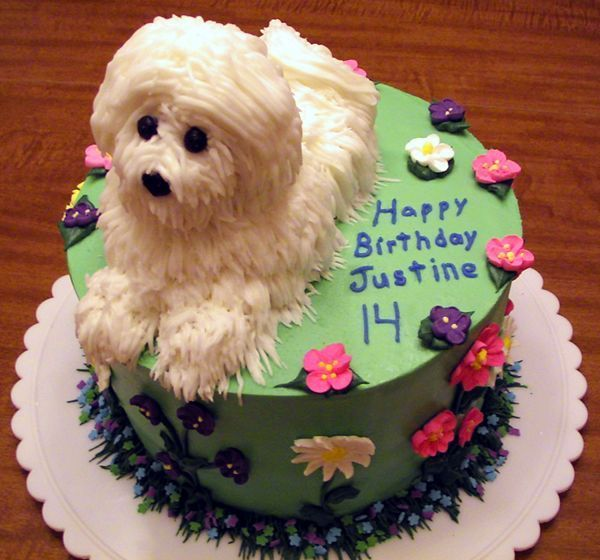 382 Best Images About Bichon Cake Decorating On Pinterest
