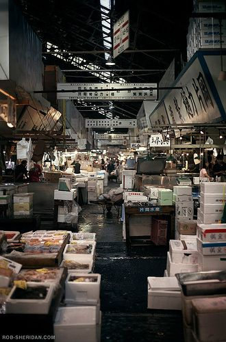 Tsukiji Fish Market - Tokyo, Japan. Got up very early in the morning, and took a short train ride to the outskirts of Tokyo. We walked into this vast and unique fish market, where there were hundreds of fish that we didn't know existed. God's little salt water paridise! What an adventure!