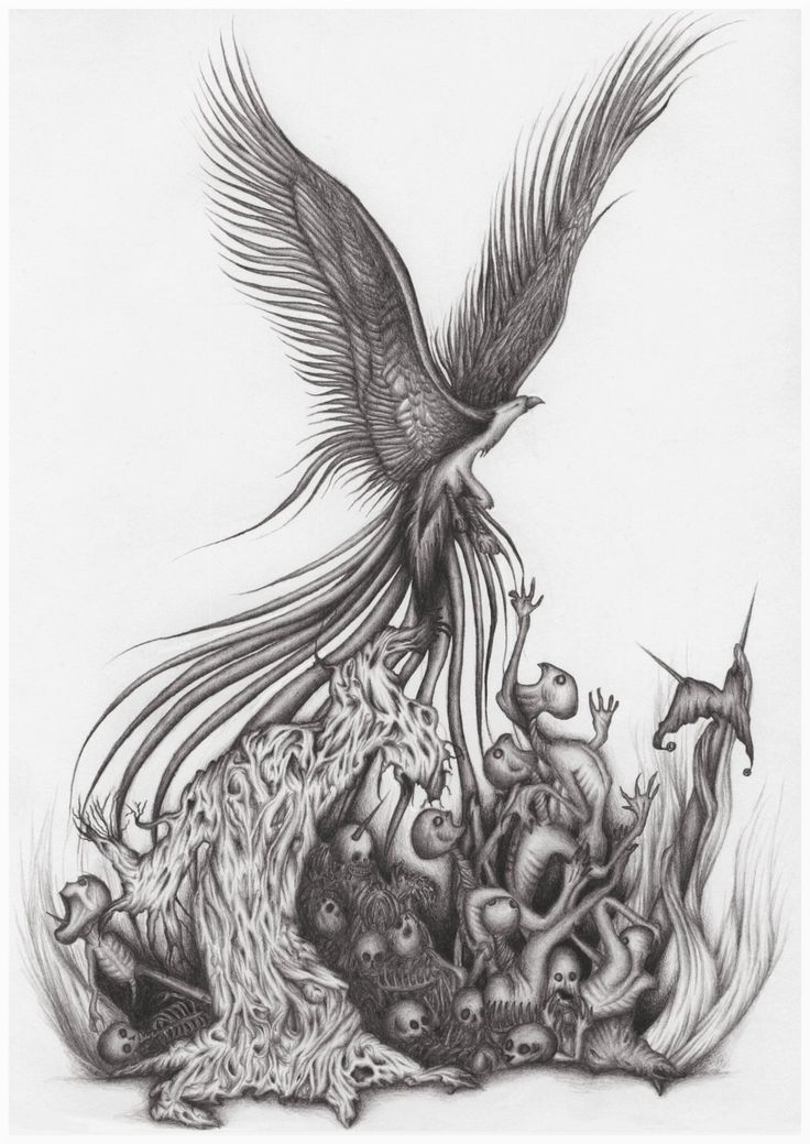 Phoenix Bird With Skull  Tattoo Design