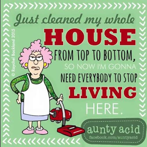 121 Best Images About Housework Humor On Pinterest Self