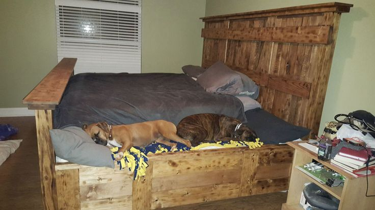 King Bed With Doggie Insert Custom Bed King Bed Frame Wooden Dog Bed