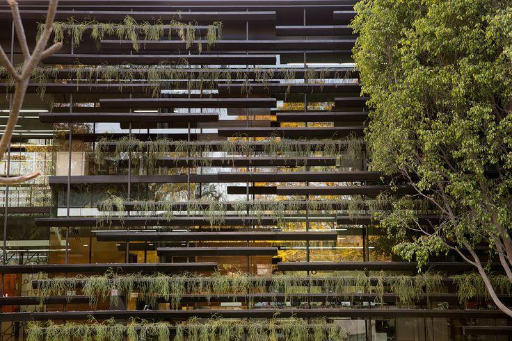 Galería - Corporativo Falcón 2 / Rojkind Arquitectos + Gabriela Etchegaray - 3
