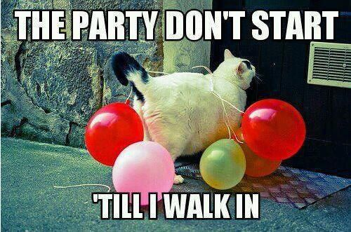 the party don't start til i walk in