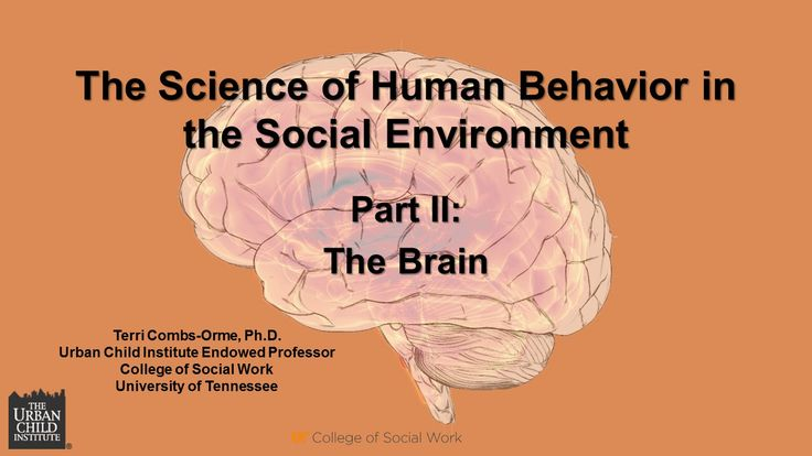 human behavior and the socil environment In human behavior in the social environment from an african american  perspective, leading black scholars come together to discuss complex human  behavior.
