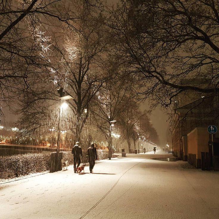 River Aura in Winter - Turku, Finland