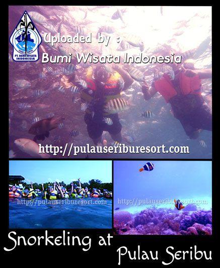 #Snorkeling at Pulau Seribu