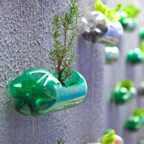 Creatief tuinieren op weinig m²