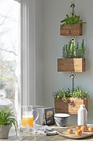 indoor herb garden or use for organizing.