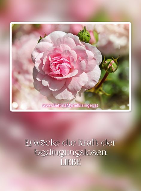 Bettina Myriel Eisinger: ♥Affirmation/Impuls...4.9.2016♥