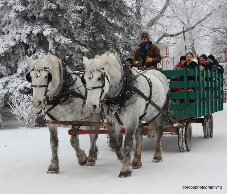 23 Best Happy Holidays At Heritage Park! Images On